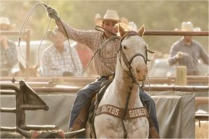 Out Of The Chute: Carbondale Wild West Rodeo